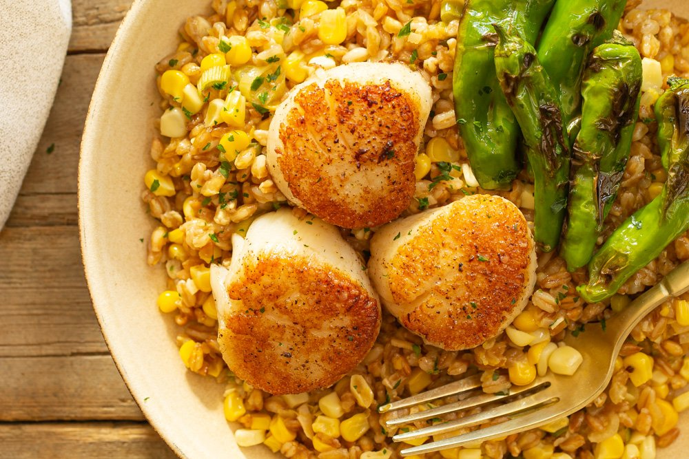 a partial view of a bowl with scallops and risotto